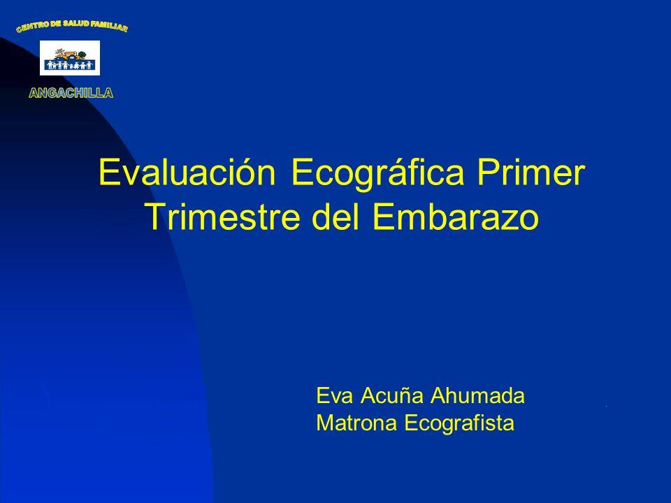 Evaluación Ecográfica Primer Trimestre del Embarazo