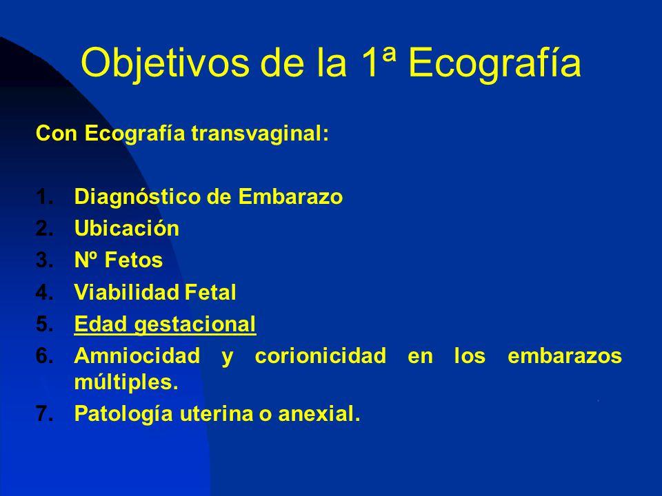 Objetivos de la 1ª Ecografía
