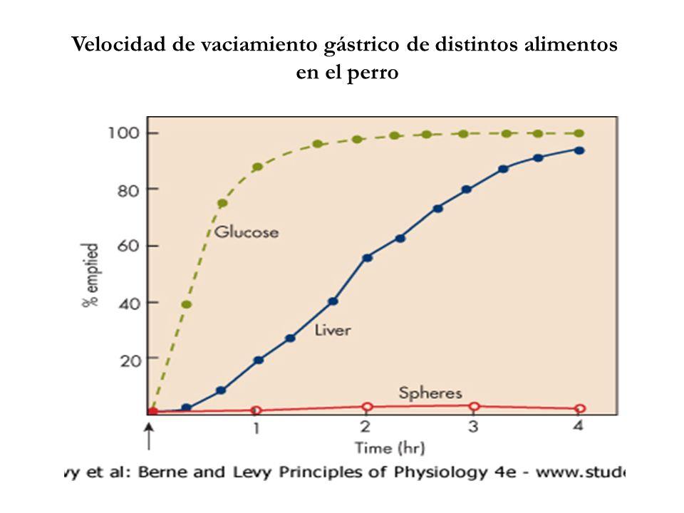 Velocidad de vaciamiento gástrico de distintos alimentos
