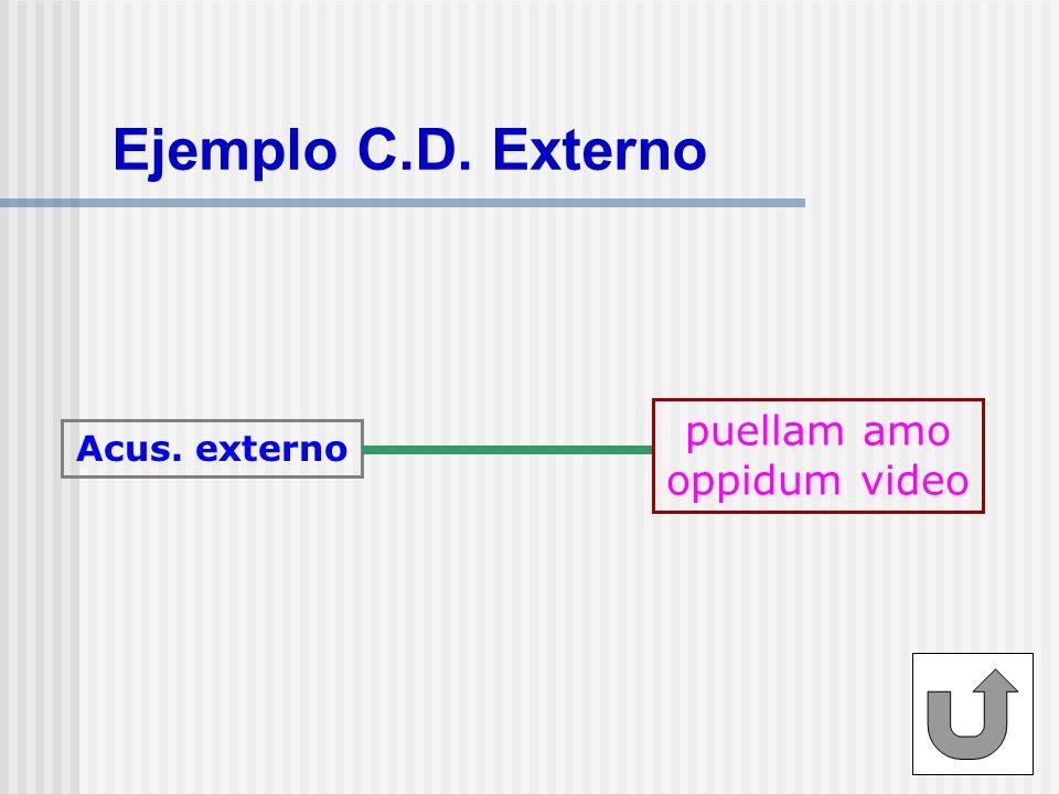 Ejemplo C.D. Externo puellam amo oppidum video Acus. externo