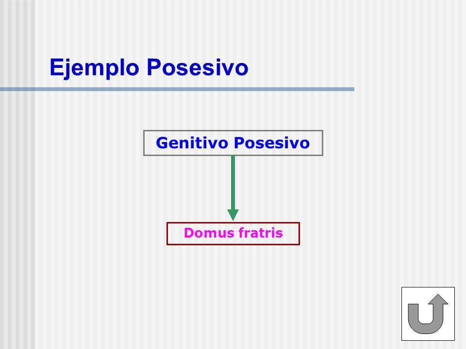 Ejemplo Posesivo Genitivo Posesivo Domus fratris