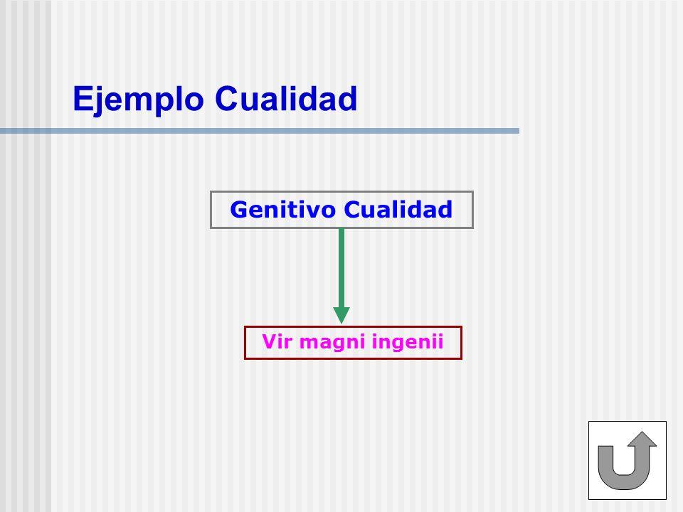 Ejemplo Cualidad Genitivo Cualidad Vir magni ingenii