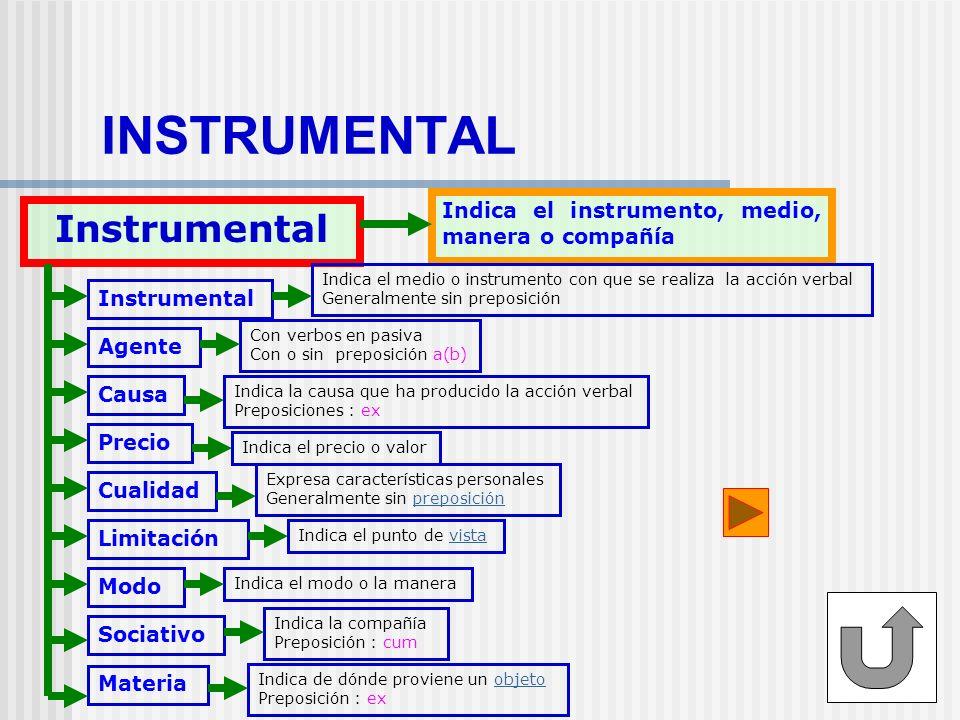 INSTRUMENTAL Instrumental