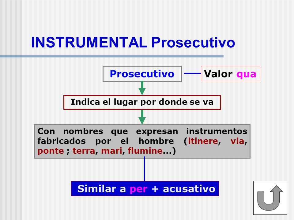 INSTRUMENTAL Prosecutivo