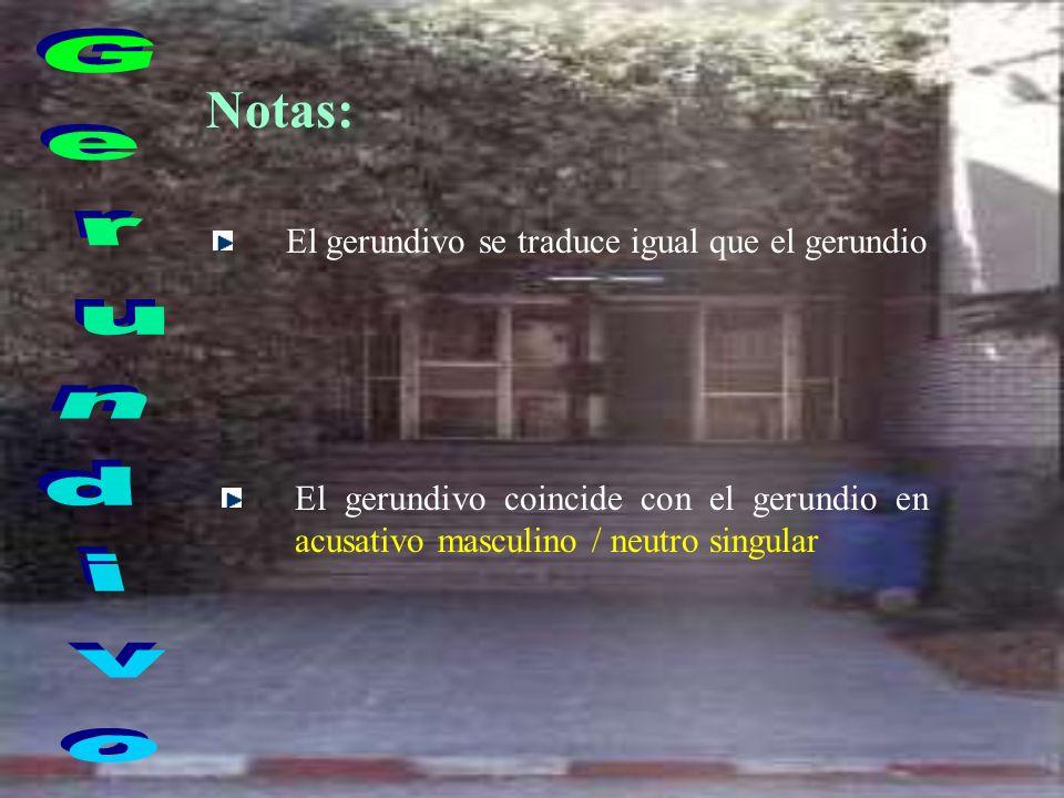 Notas: Gerundivo El gerundivo se traduce igual que el gerundio