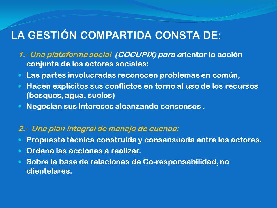 LA GESTIÓN COMPARTIDA CONSTA DE: