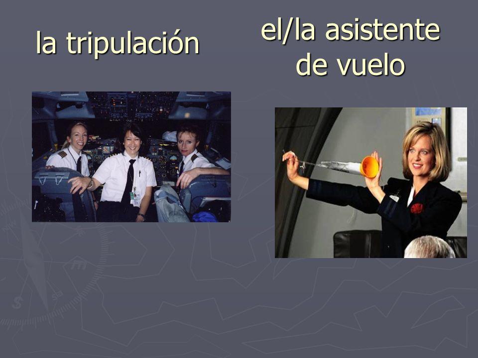 el/la asistente de vuelo