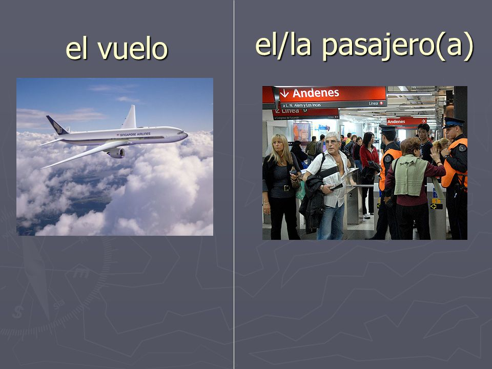 el/la pasajero(a) el vuelo