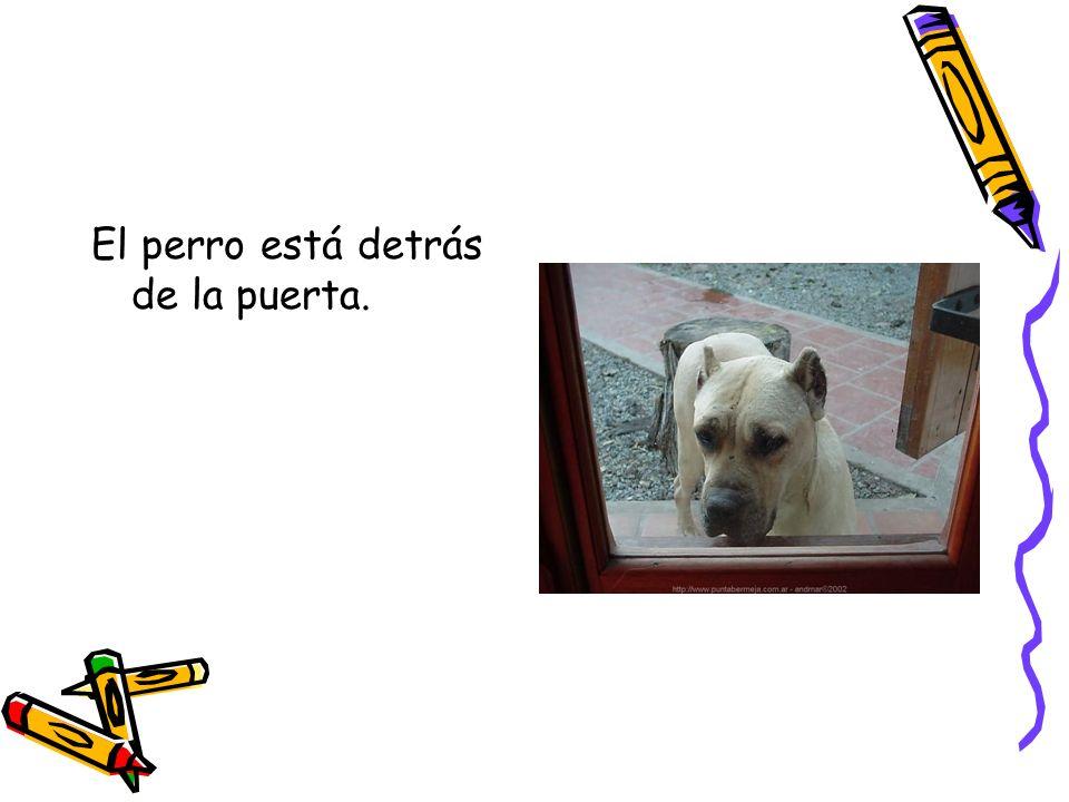 El perro está detrás de la puerta.
