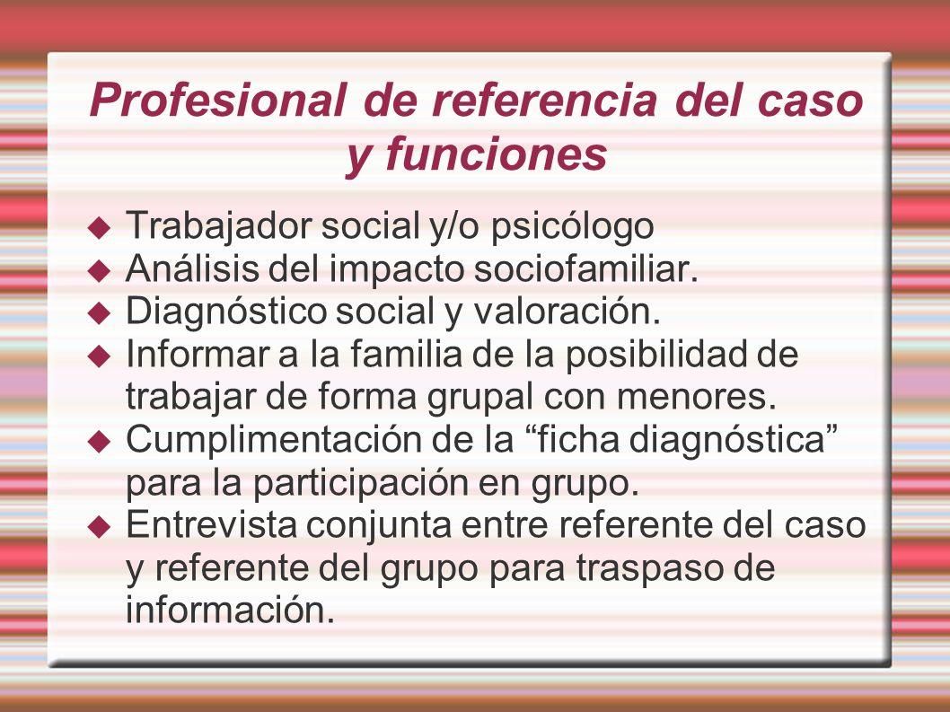Profesional de referencia del caso y funciones