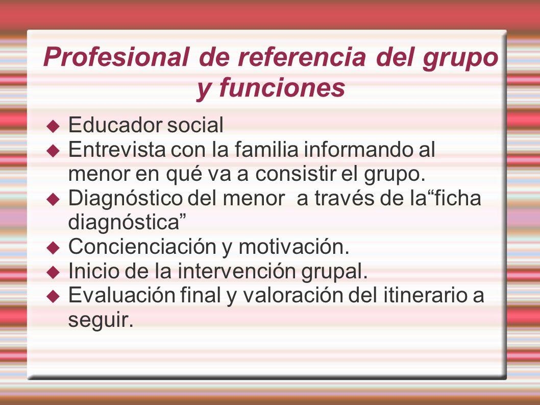 Profesional de referencia del grupo y funciones