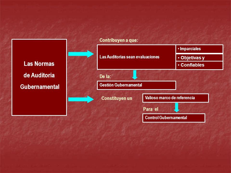 Las Normas de Auditoria Gubernamental