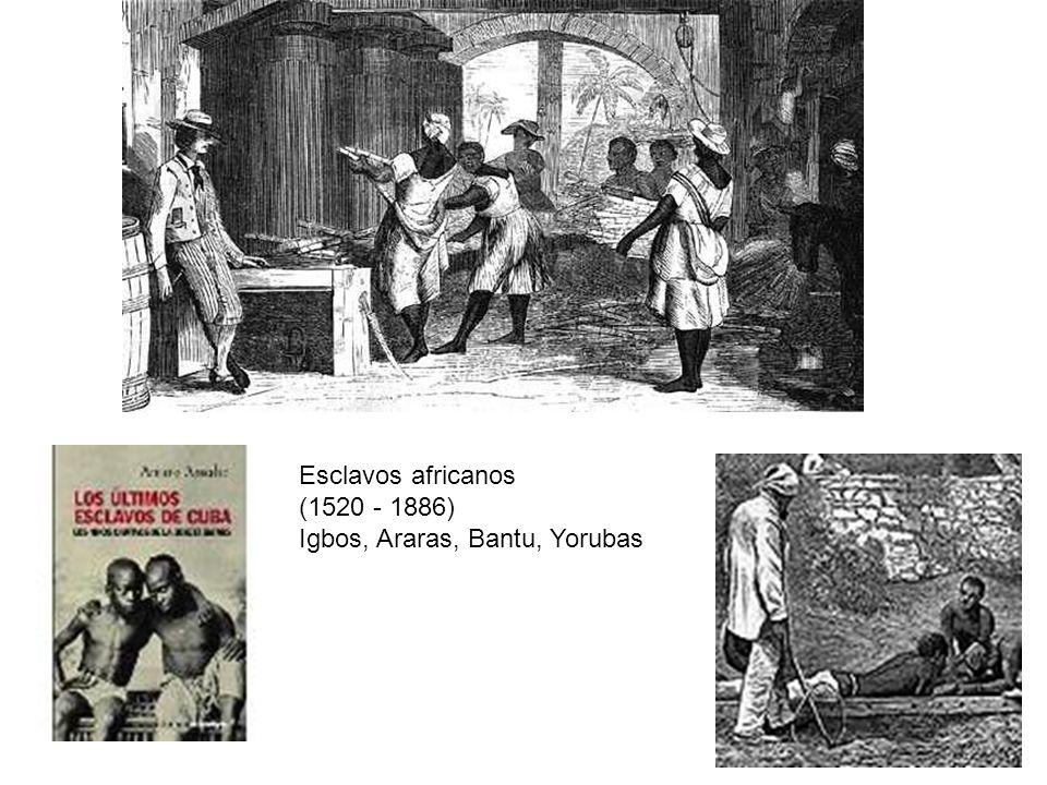 Esclavos africanos (1520 - 1886) Igbos, Araras, Bantu, Yorubas