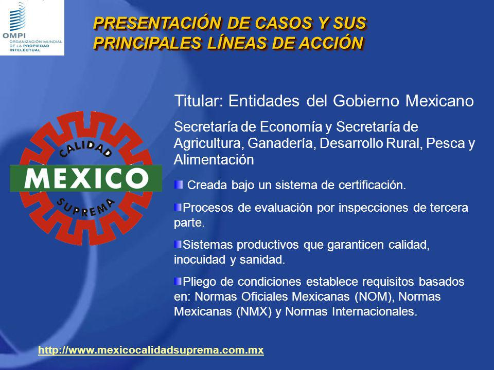 PRESENTACIÓN DE CASOS Y SUS PRINCIPALES LÍNEAS DE ACCIÓN