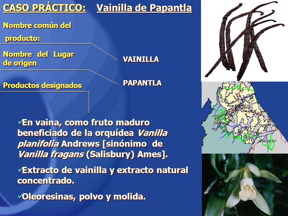 CASO PRÁCTICO: Vainilla de Papantla