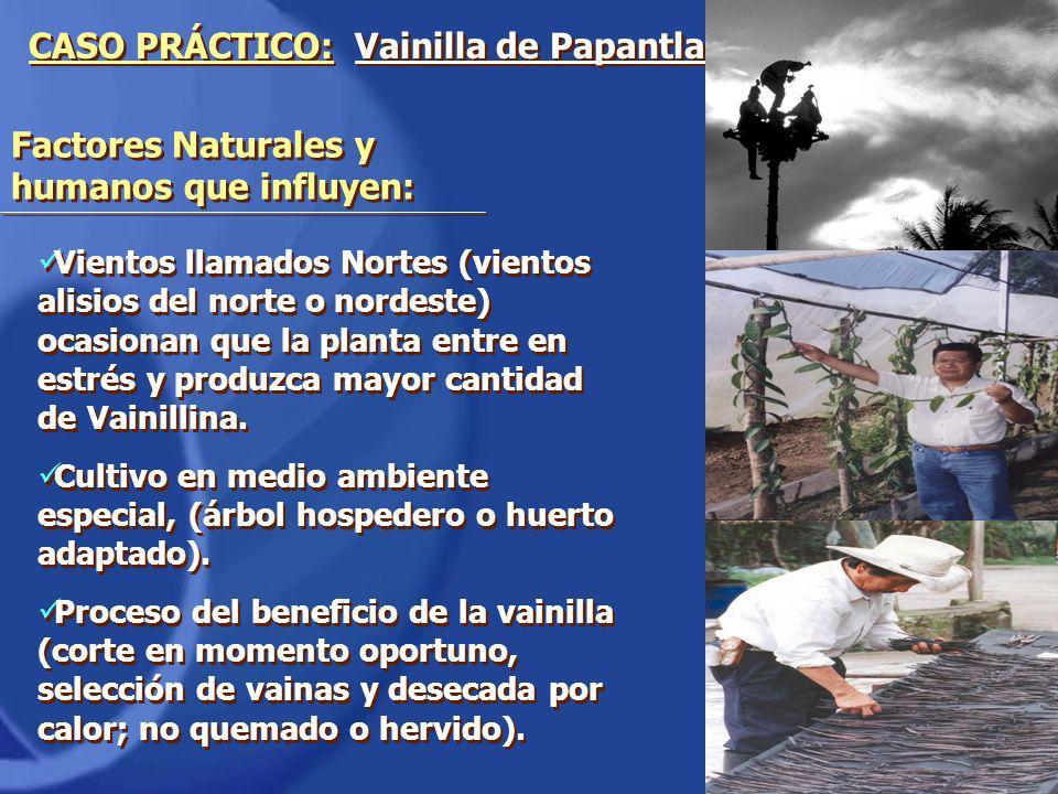 Factores Naturales y humanos que influyen: