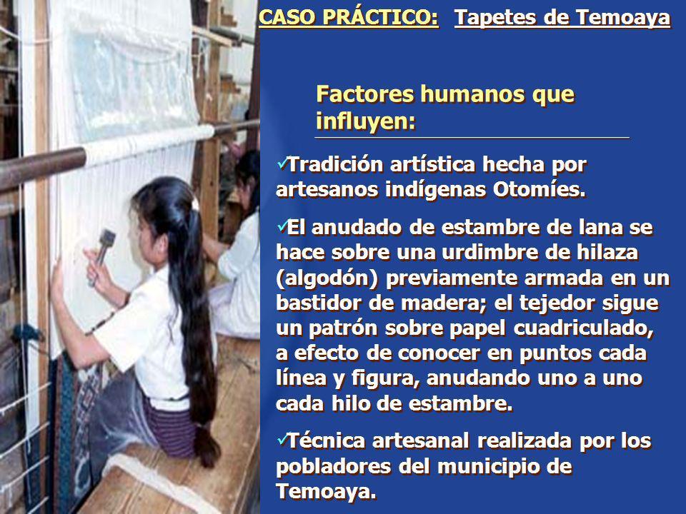 Factores humanos que influyen: