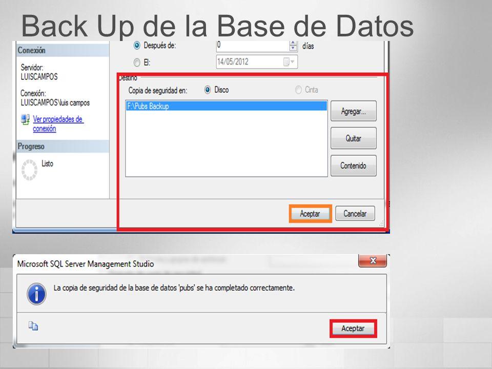 Back Up de la Base de Datos
