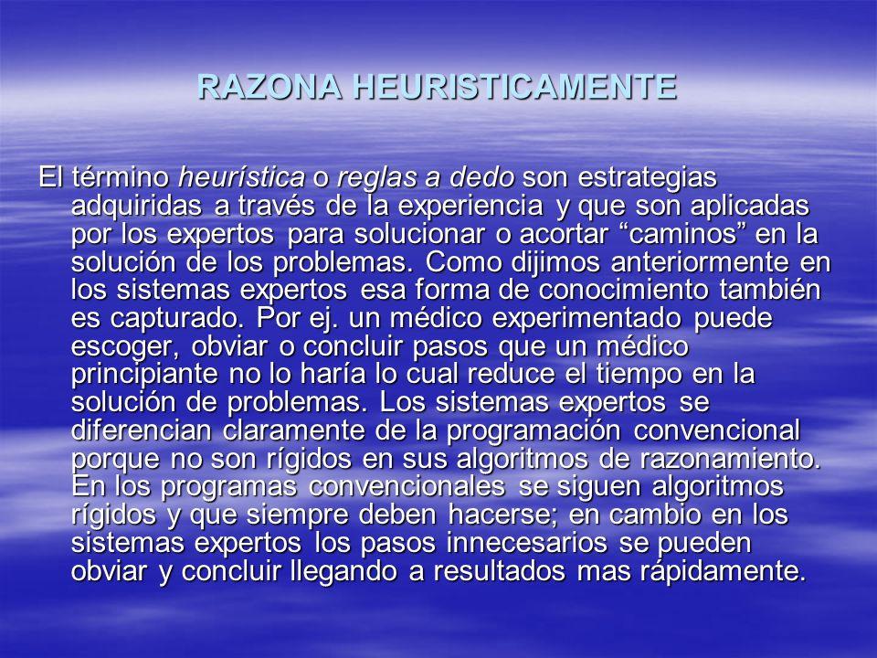 RAZONA HEURISTICAMENTE