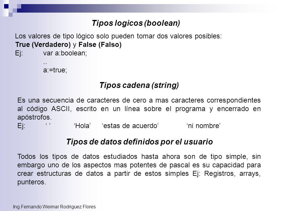 Tipos logicos (boolean) Tipos de datos definidos por el usuario