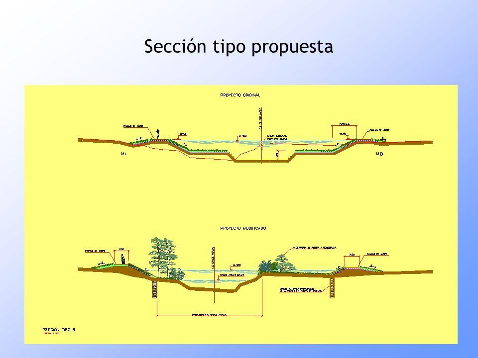 Sección tipo propuesta