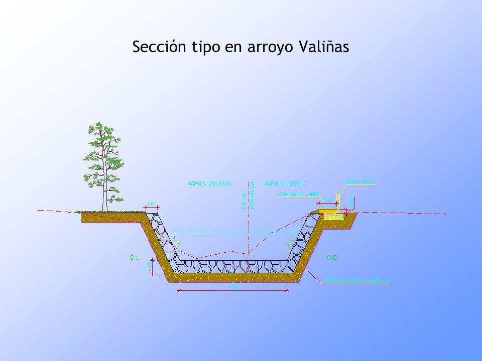 Sección tipo en arroyo Valiñas