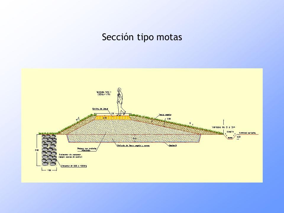 Sección tipo motas