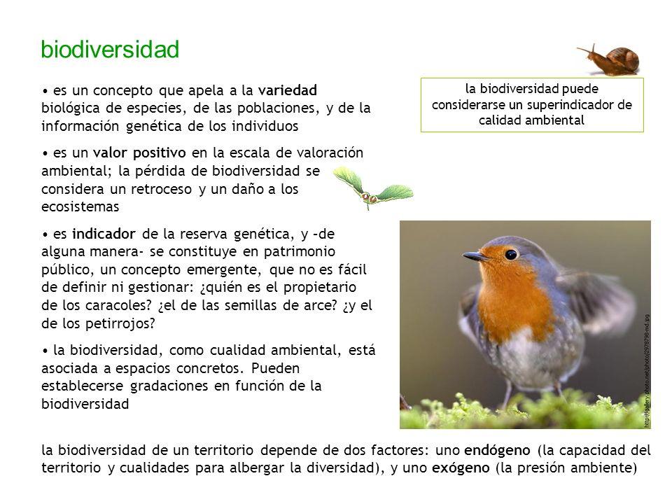 biodiversidad es un concepto que apela a la variedad biológica de especies, de las poblaciones, y de la información genética de los individuos.