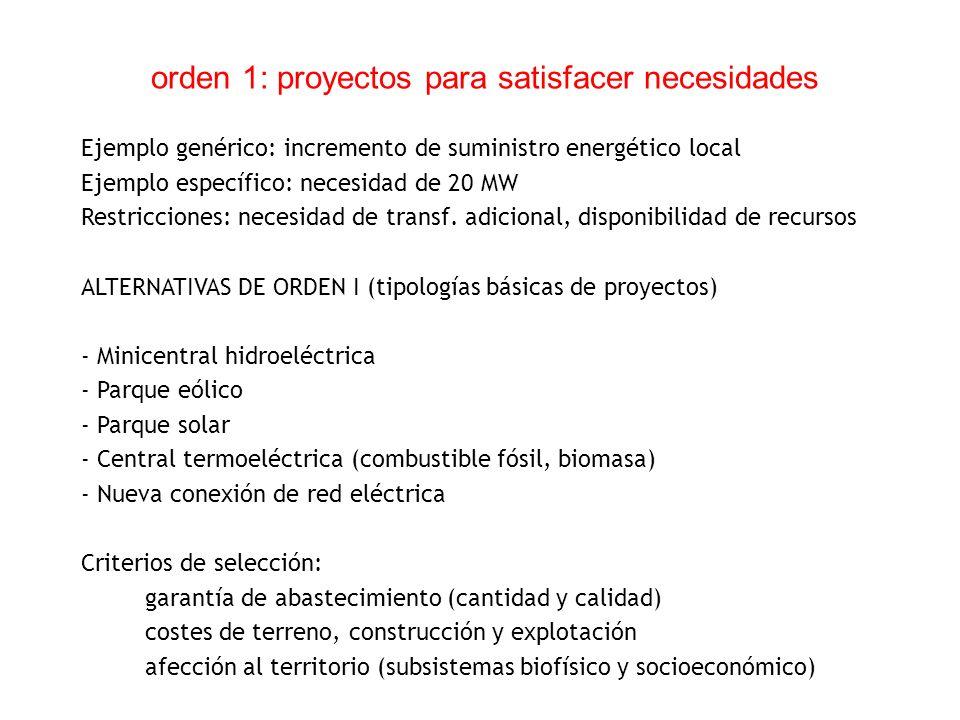 orden 1: proyectos para satisfacer necesidades
