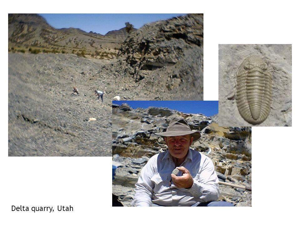 Delta quarry, Utah