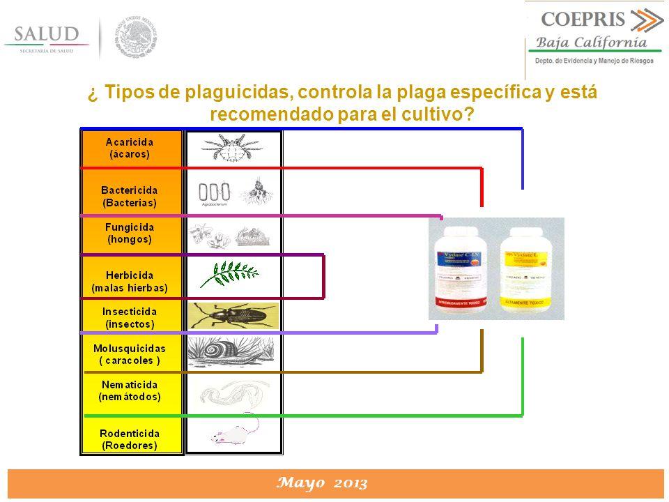 ¿ Tipos de plaguicidas, controla la plaga específica y está recomendado para el cultivo