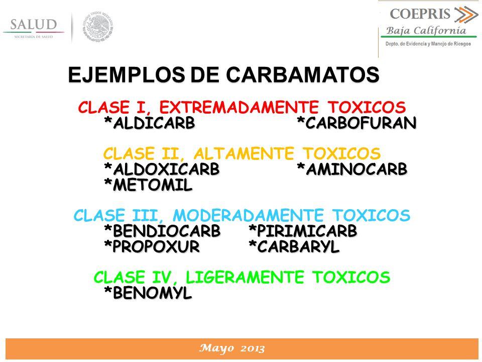 EJEMPLOS DE CARBAMATOS
