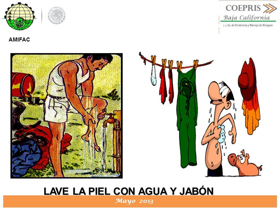 LAVE LA PIEL CON AGUA Y JABÓN