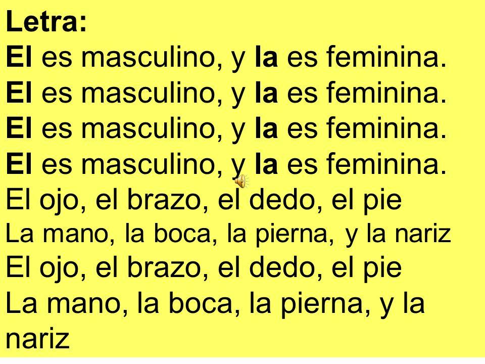 El es masculino, y la es feminina. El es masculino, y la es feminina.