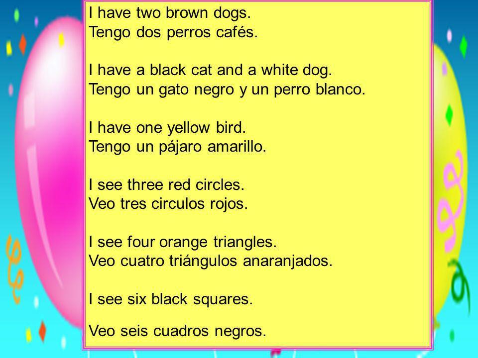 I have two brown dogs. Tengo dos perros cafés. I have a black cat and a white dog. Tengo un gato negro y un perro blanco.