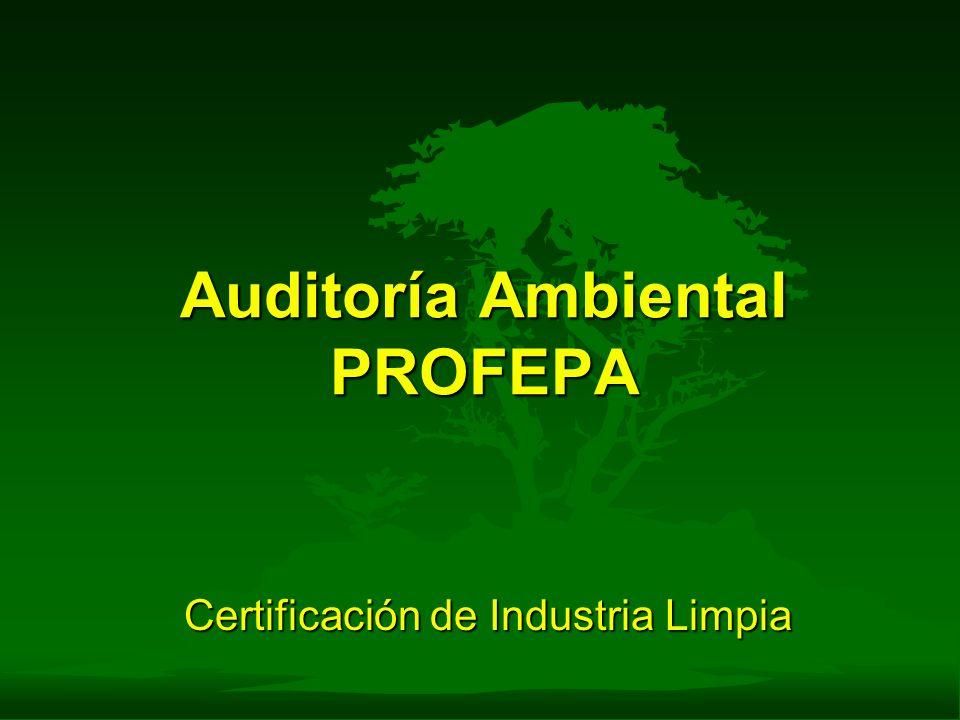 Auditoría Ambiental PROFEPA