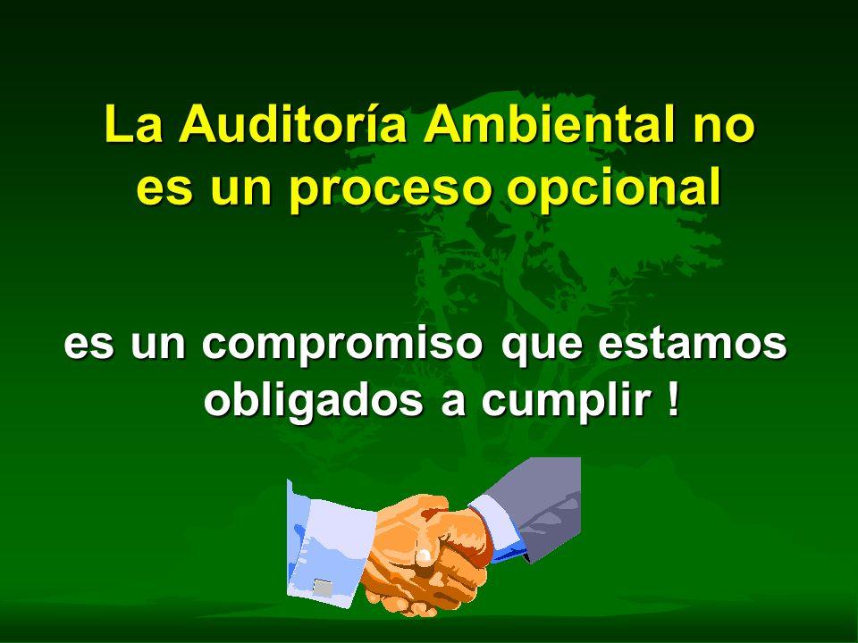 La Auditoría Ambiental no es un proceso opcional