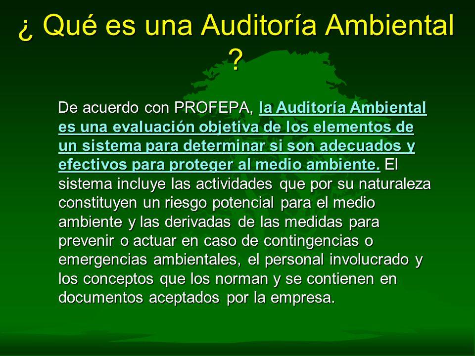 ¿ Qué es una Auditoría Ambiental