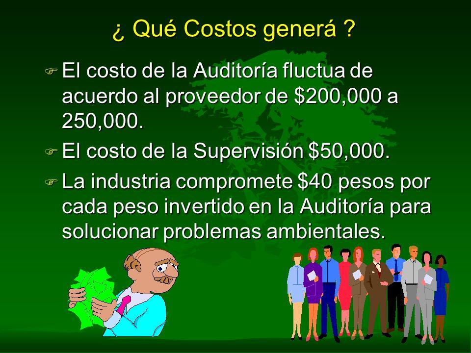 ¿ Qué Costos generá El costo de la Auditoría fluctua de acuerdo al proveedor de $200,000 a 250,000.