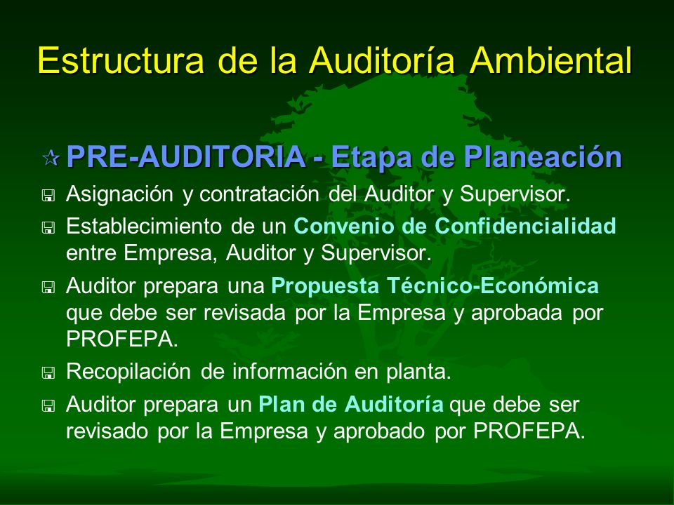 Estructura de la Auditoría Ambiental