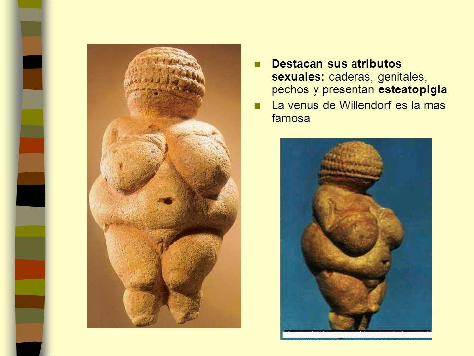 Destacan sus atributos sexuales: caderas, genitales, pechos y presentan esteatopigia