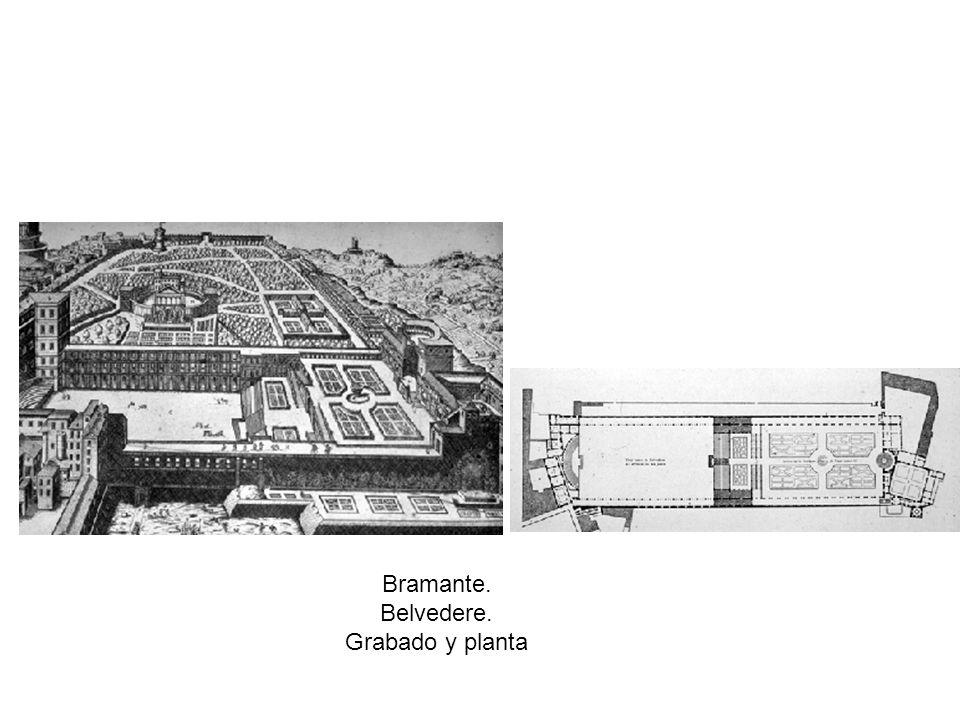 Bramante. Belvedere. Grabado y planta