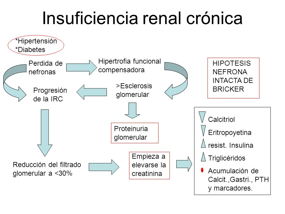 Insuficiencia renal crónica - ppt descargar