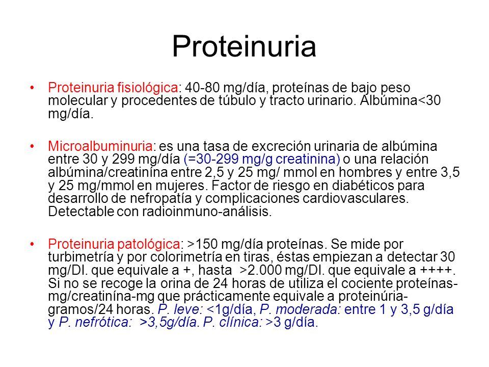 Proteinuria Proteinuria fisiológica: 40-80 mg/día, proteínas de bajo peso molecular y procedentes de túbulo y tracto urinario. Albúmina<30 mg/día.