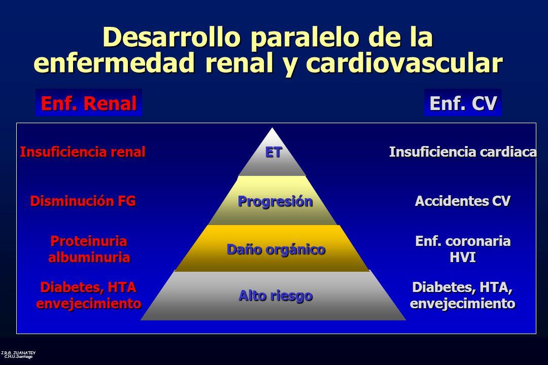 Desarrollo paralelo de la enfermedad renal y cardiovascular