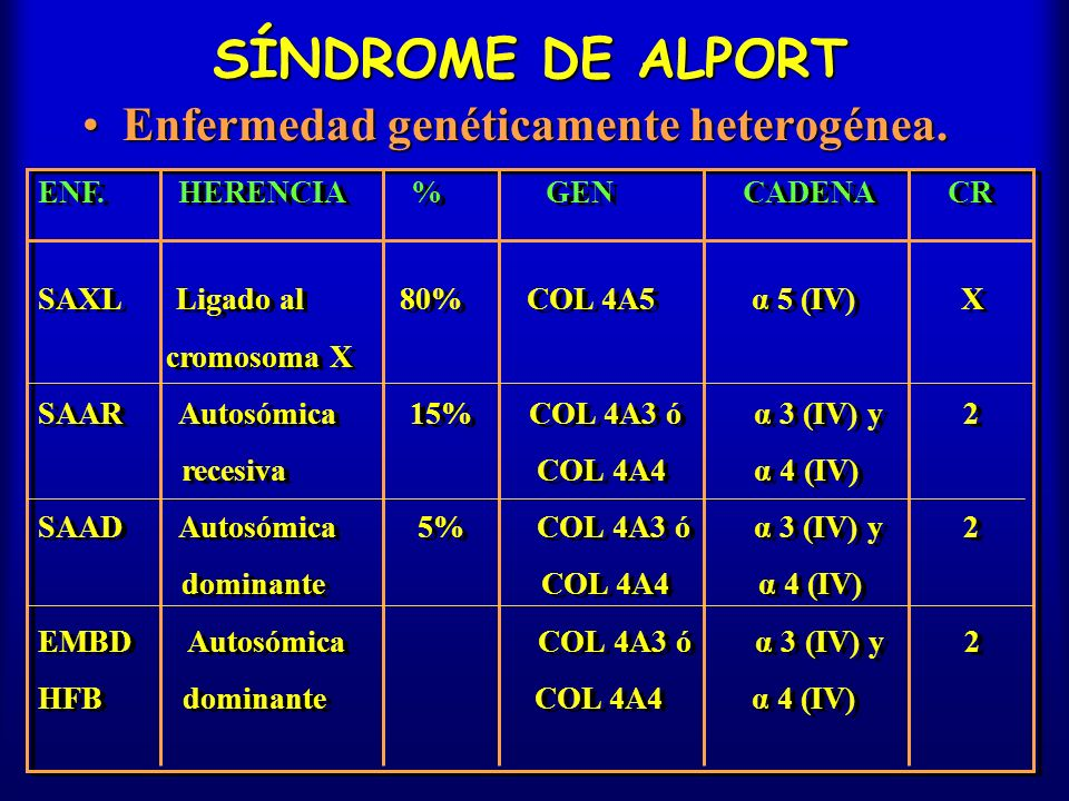 SÍNDROME DE ALPORT Enfermedad genéticamente heterogénea.