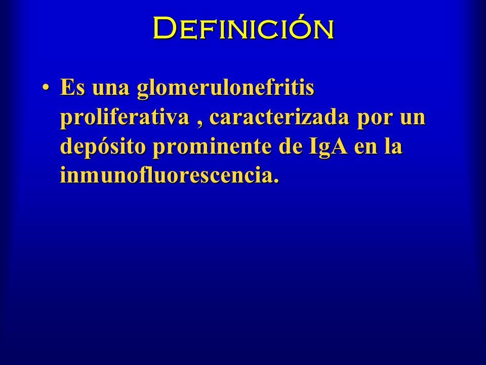 Definición Es una glomerulonefritis proliferativa , caracterizada por un depósito prominente de IgA en la inmunofluorescencia.