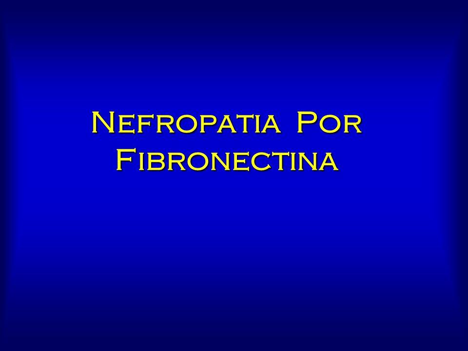 Nefropatia Por Fibronectina