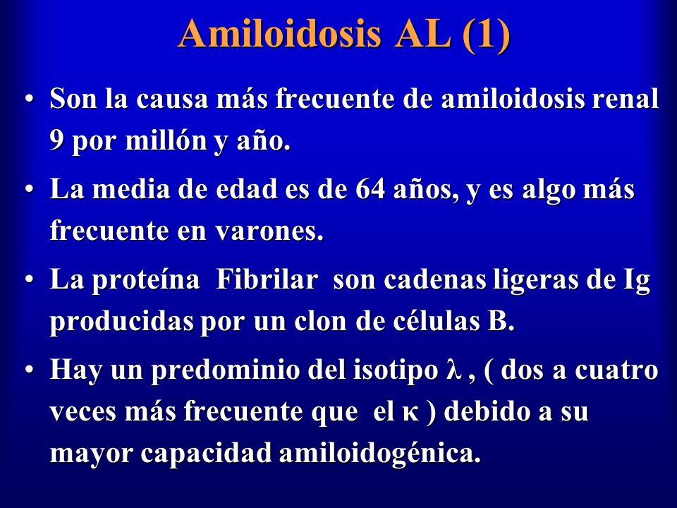 Amiloidosis AL (1) Son la causa más frecuente de amiloidosis renal 9 por millón y año.