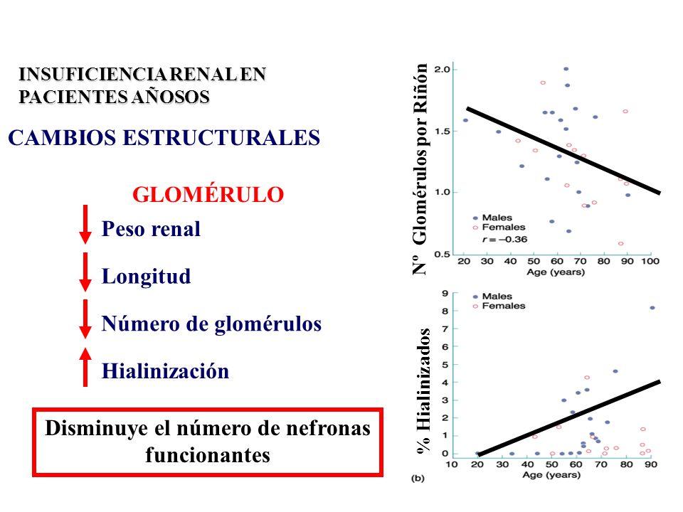 Nº Glomérulos por Riñón